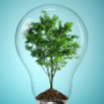 Why Most 'Green' Electricity in Europe Isn't Green