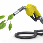 Biofuels Are a Loser, Despite the Hope and Hype