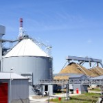 Biomass: Not Carbon Neutral and Often Not Clean