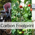 My Carbon Footprint in 2012