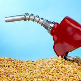 corn ethanol us policy thumb