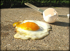 egg_pavement