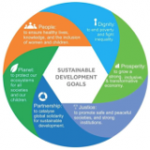 Understanding the Sustainable Development Goals and Looking Forward