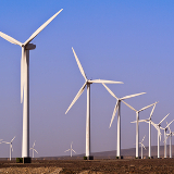 wind energy biodiversity thumb