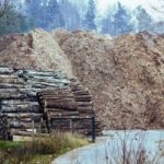Trading Biomass Like Oil: Lithuania Shows How It Can Be Done