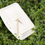 Banning Styrofoam, Managing Our Waste, and Promoting Sustainability